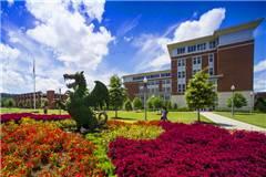 2020年USNEWS阿拉巴马大学伯明翰分校排名第166