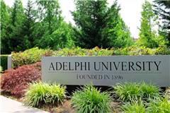 2020年USNEWS阿德菲大学排名第166
