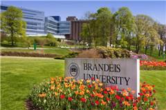 2019年QS布兰迪斯大学世界排名最新排名第429