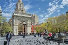 2019年QS纽约大学世界排名最新排名第43