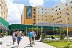 2019年USNEWS南佛罗里达大学排名第124