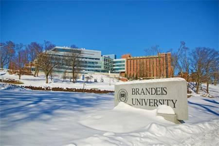 布兰迪斯大学世界排名最新排名第446(2021年QS世界大学排名)