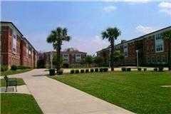 南卡罗来纳州州立大学美国大学排名