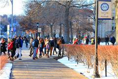 匹兹堡大学世界排名