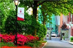 史蒂文斯理工学院美国大学专业排名