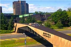 霍夫斯特拉大学美国大学排名
