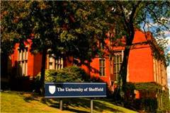 谢菲尔德大学英国大学排名
