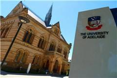 阿德莱德大学优势专业及优势专业排名
