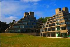 东安格利亚大学世界排名