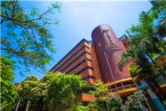 香港理工大学世界排名