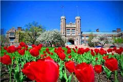 圣路易斯华盛顿大学世界排名