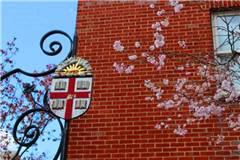 布朗大学美国大学专业排名