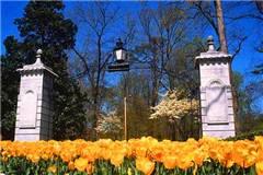 埃默里大学美国大学排名