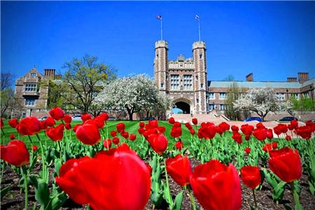 圣路易斯華盛頓大學世界排名及專業排名匯總(THE世界大學排名版)