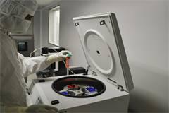 新加坡化学工程专业排名(附2019年QS化学工程专业新加坡大学排名榜单)