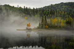 2017年QS环境科学专业世界排名