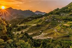 英国农业与林业学专业排名(2013年TIMES农业与林业学专业英国大学排名)